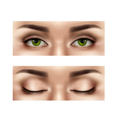 Realistic female eyes set vector