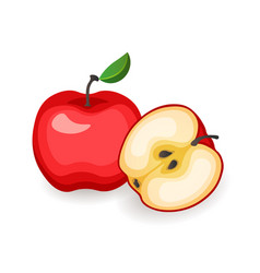 red whole and cut apples on white background vector image