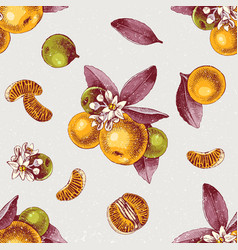 seamless pattern with mandarin branches and slices vector image