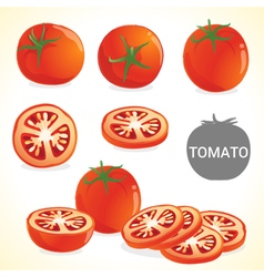 Set of tomato in various styles and format vector