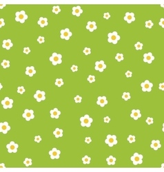 Camomile flower seamless pattern vector image
