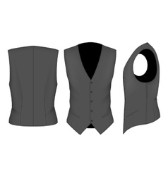 Men waistcoat for business men vector image vector image