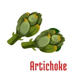 Fresh green artichoke vegetable icon vector image
