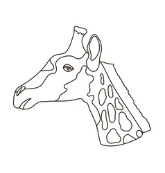 Giraffe icon in outline style isolated on white vector