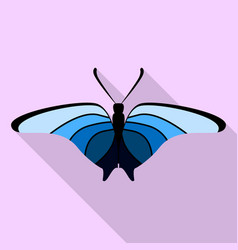 gradient blue butterfly icon flat style vector image