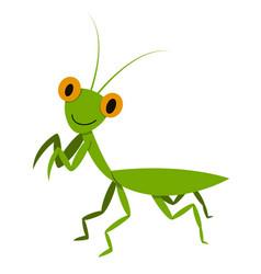 mantis mantodea grasshopper in flat style vector image