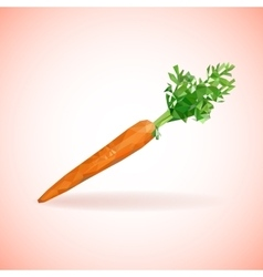 Unusual trendy poly style carrot isolated on vector image
