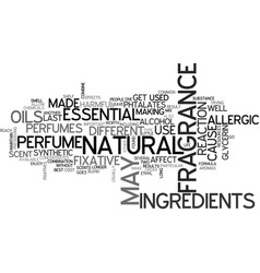 what perfumes are made from text word cloud vector image