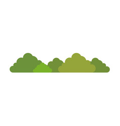 bush isolated plant vector image vector image
