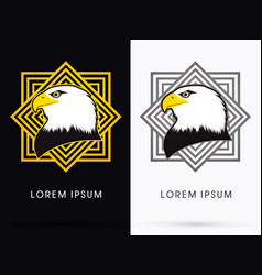 eagle head face vector image vector image