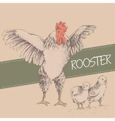 front rooster and chick vector image vector image