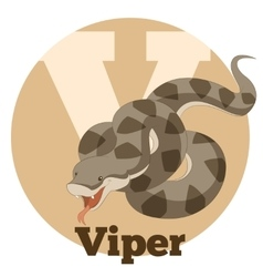Abc cartoon viper vector