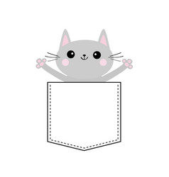 gray cat in the pocket holding hands up cute vector image