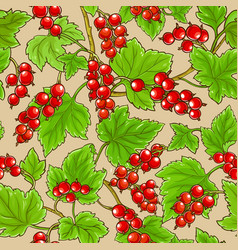 Red currant branches pattern on color background vector