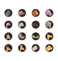 round animal avatars collection vector image