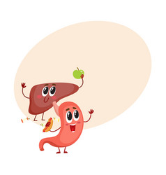 cute and funny smiling human stomach and liver vector image vector image