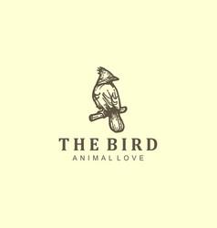 Bird logo design outdoor nature animal wildlife vector
