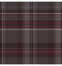 Check fabric vector image