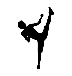 silhouette man martial arts high kick vector image