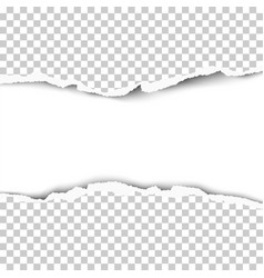 snatched hole from middle of transparent paper vector image
