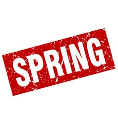 square grunge red spring stamp vector image