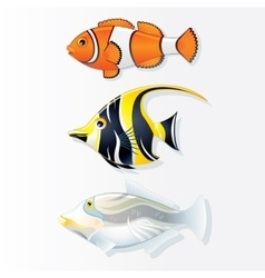 Tropical Reef Fishes Collection vector image