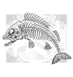 Fishbone drawing vector