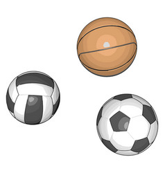 balls for various sports on white background vector image