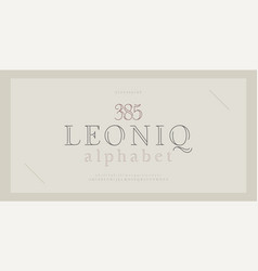 Elegant alphabet letters serif font and number vector