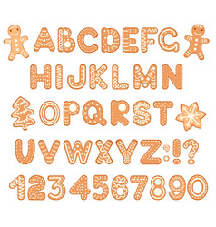Font alphabet and numbers from gingerbread vector