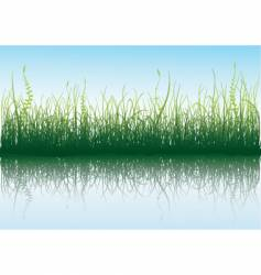 Green grass with blue sky vector