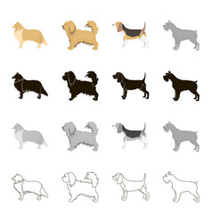 pointer dog collie scottish shepherd riesen vector image