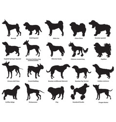 Set of dogs silhouettes-3 vector