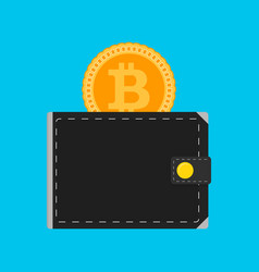 bitcoin wallet isolated flat vector image