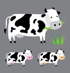 Cow farm cute character cartoon design vector