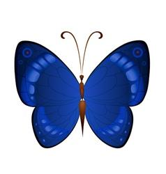 Dark blue butterflies vector