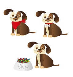 dog with different accessories isolated on white b vector image