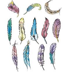 Motley feathers vector