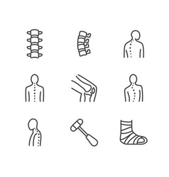 Spine backbone line icons orthopedics clinic vector