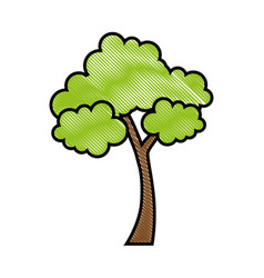 Trees icon image vector