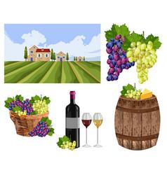 Vineyard set collection landscape bottle glass vector