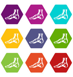 xray of foot icons set 9 vector image
