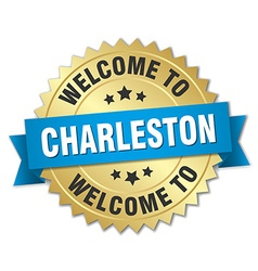 Charleston 3d gold badge with blue ribbon vector