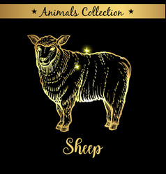 Golden and royal hand drawn emblem of farm sheep vector