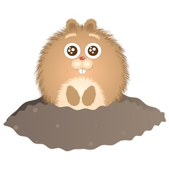 Little groundhog vector