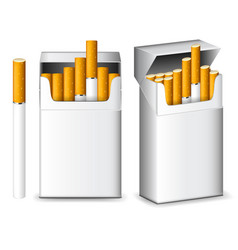 Pack cigarettes isolated on white vector