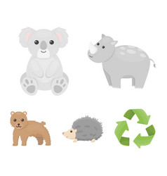 rhino koala panther hedgehoganimal set vector image