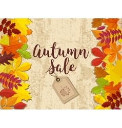 Autumn sale Fall sale design Can be used for vector image vector image