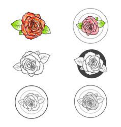 rose flower different logo design set vector image vector image