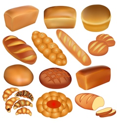 set of loaves of bread vector image vector image
